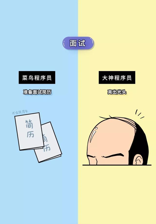 """""""菜鸟""""程序员 VS""""大神""""程序员,网友:这是要炸锅的节奏吗?"""